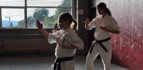 Bild Kinder Karate
